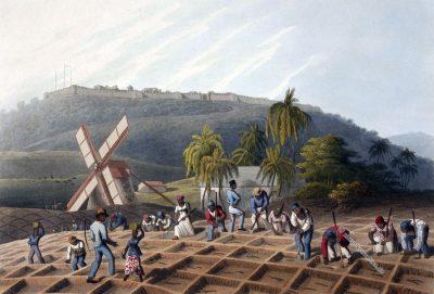 Sklaven, Zuckerrohr, Plantage, Antigua, Kolonialismus, Zuckerrohrfeld, Bermudas, William Clark