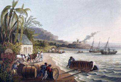 Zuckerfässer, Zuckerrohr, Sklaven, Plantage, Antigua, Kolonialismus, Bermudas, Karibik, William Clark