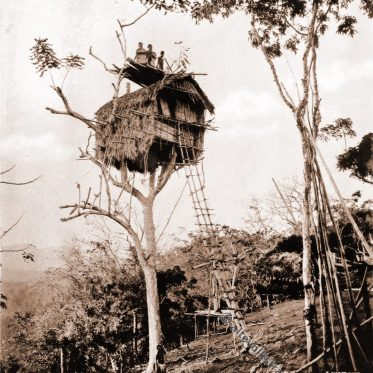 Baumhaus im Dorf Koiari auf Papua-Neuguinea
