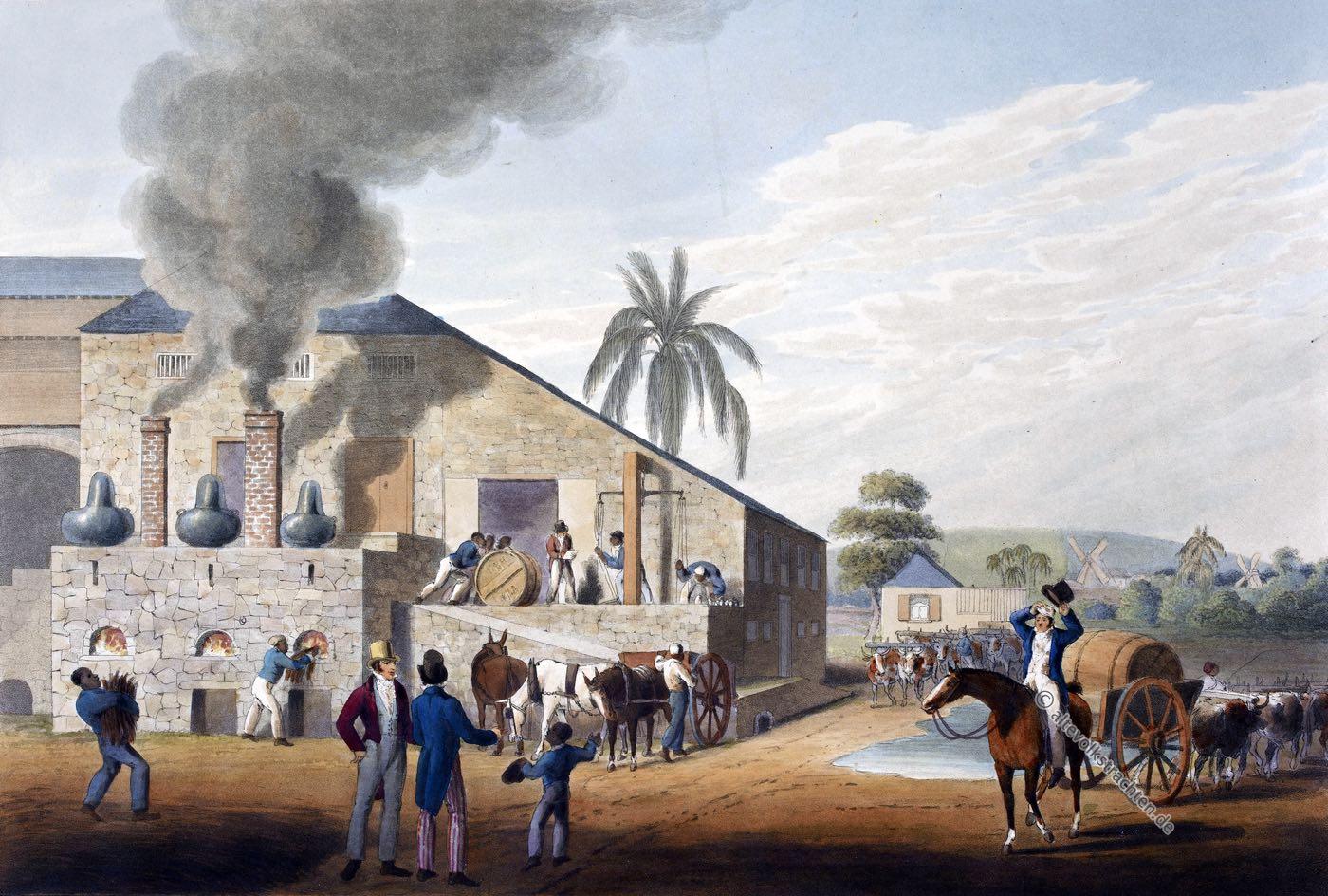 Zuckerraffinerie, Sklaven, Zuckerrohr, Plantage, Antigua, Kolonialismus, Bermudas, Karibik, William Clark