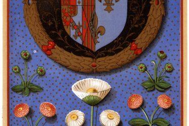 Wappen, Heraldik, Margarete von Navarra, Renaissance, Frankreich