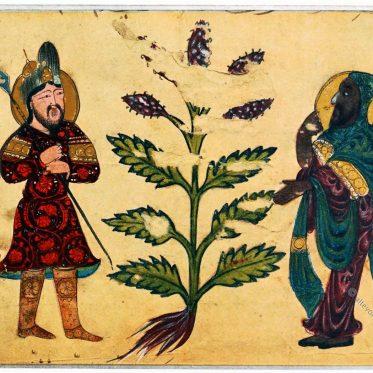 Arabische Kleidung. Von Meister Abdallah ben Fad. Mesopotamien.