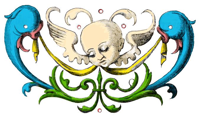 Illustration, Delphin, Putte