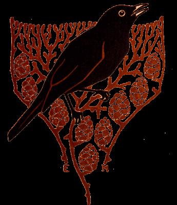 amsel, illustration, singvogel,