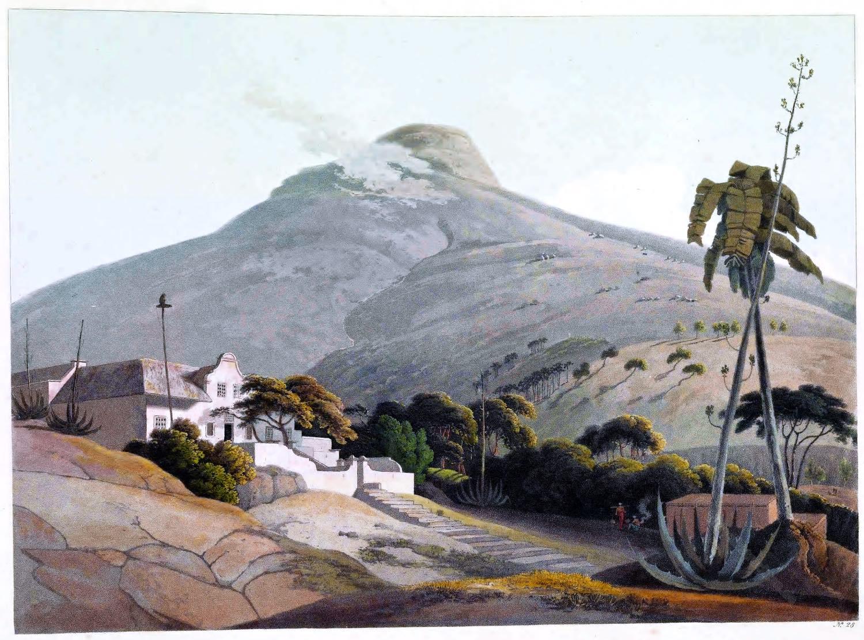 Löwenkopf, Berg, Kapstadt, Südafrika, Landschaft, Reise,